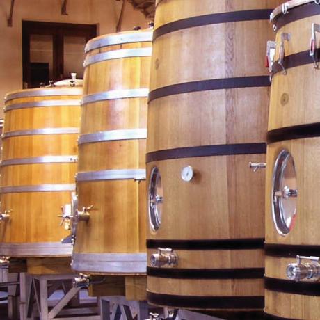 bodegas_margon_sector_vinicola